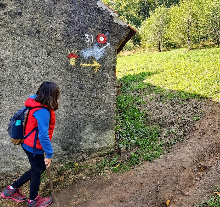 Planinarski put 31 na Medvednici